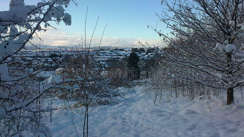 snowscape стоковая фотография rf
