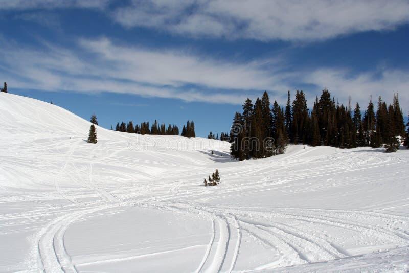 snowscape obraz stock