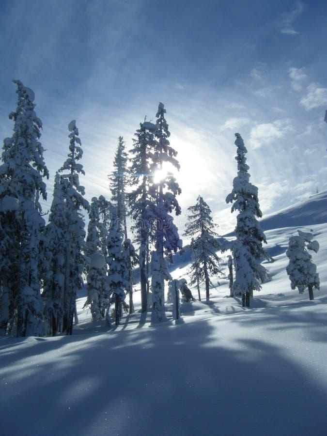 Snowscape stock image