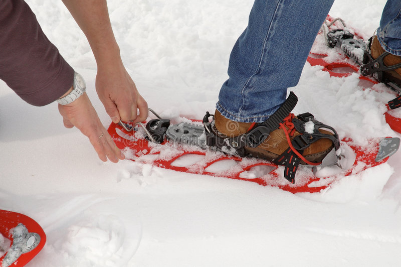 snowshoe obrazy stock