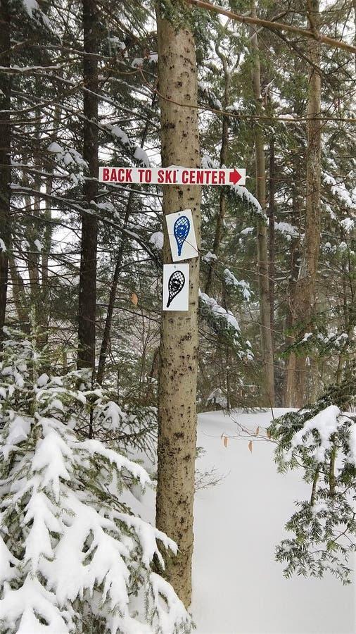 Snowshoe blasku znak przybijający drzewo obraz royalty free