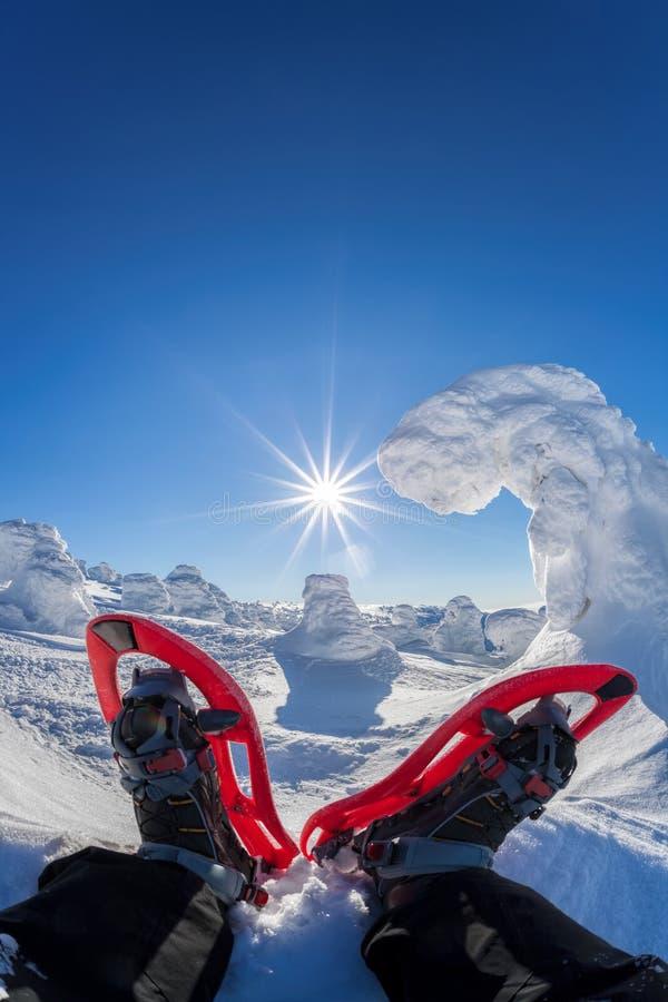 Snowshoe mot vinterskog med blå himmel fotografering för bildbyråer