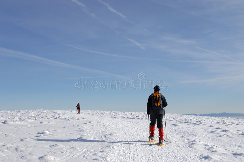 Snowshoe walking. Vosges Mountains, Alsace, France stock photo