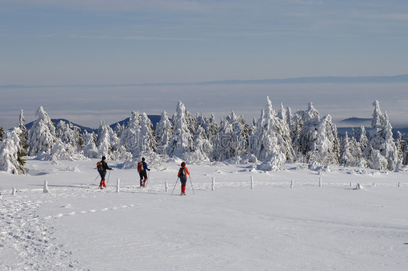 Snowshoe walking. Vosges Mountains, Alsace, France royalty free stock photography