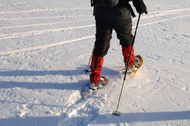 Snowshoegehen stockbild
