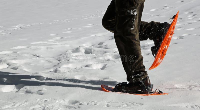 snowshoeing与橙色雪靴的人 库存照片