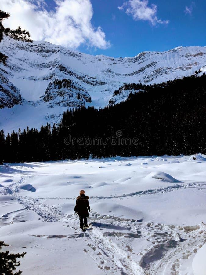 snowshoeing在卡纳纳斯基斯的女孩通过新近地搽粉的雪 库存图片