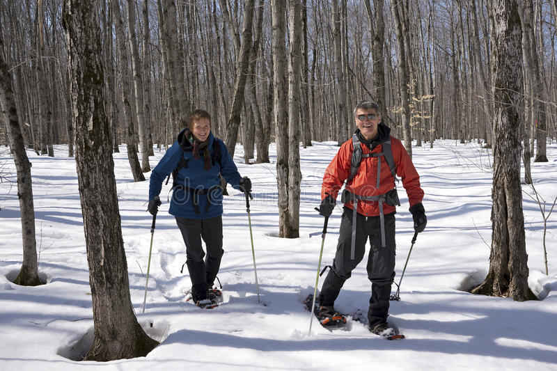 Snowshoeing στο πάρκο McLeans, νησί Manitoulin στοκ εικόνες