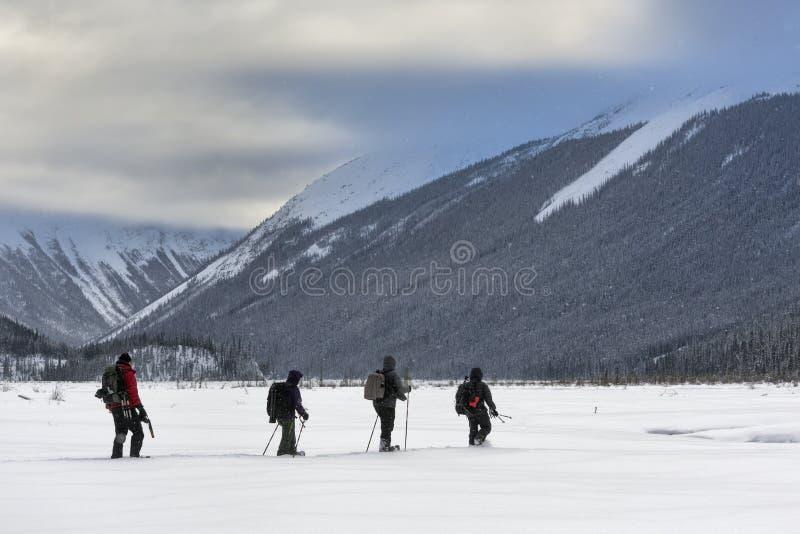 Snowshoeing το Canadian Rockies στοκ εικόνα με δικαίωμα ελεύθερης χρήσης