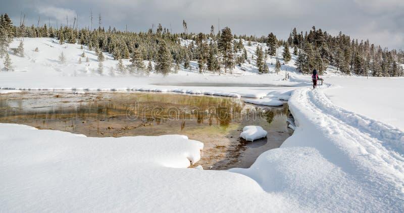 Snowshoeing в Йеллоустоне стоковые изображения rf