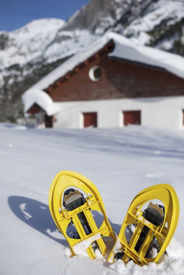 Download Snowshoeing zdjęcie stock. Obraz złożonej z kant, wycieczkowicz - 28967924