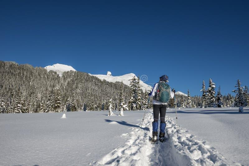 Snowshoeing imagem de stock royalty free