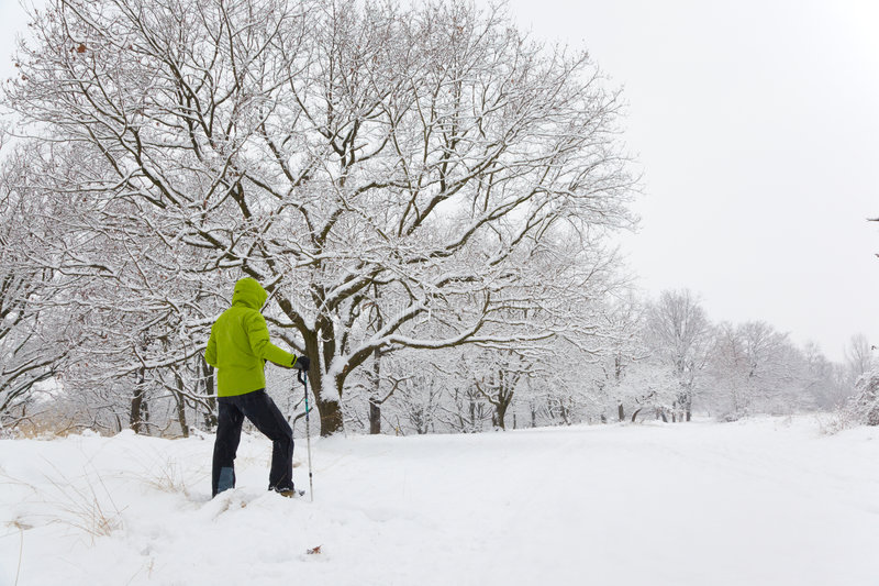 Snowshoeing στοκ εικόνα