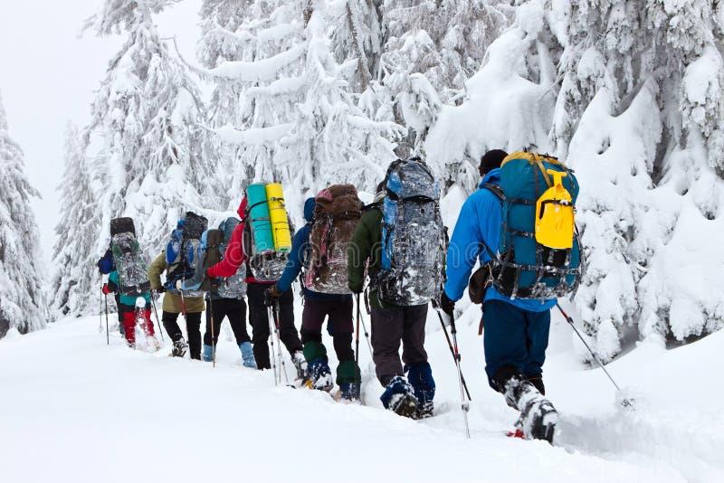 Snowshoeing in de winter stock foto's