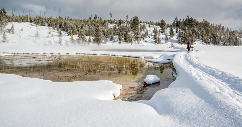 Snowshoeing em Yellowstone imagens de stock royalty free