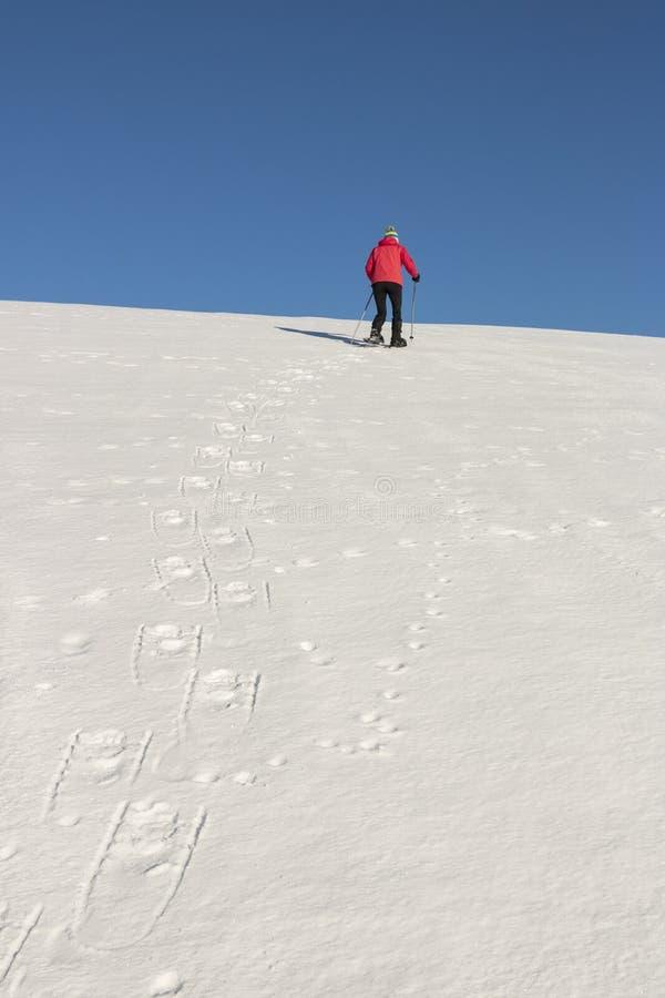 Snowshoeing - Frauentrekking in den Winterbergen stockfotos