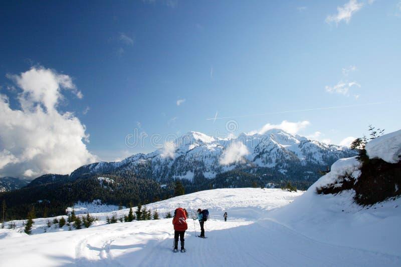 Snowshoeing Gruppenleute lizenzfreie stockfotografie