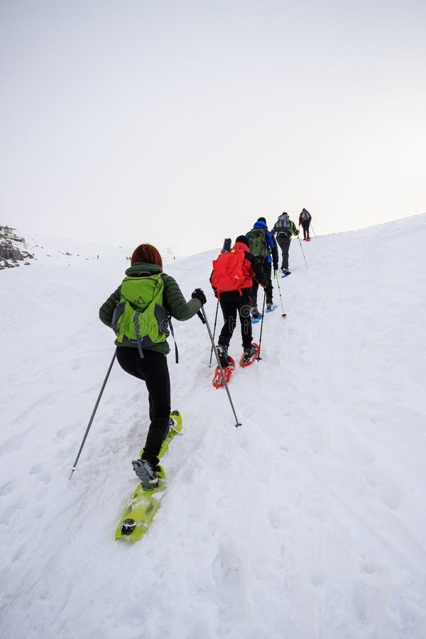 Snowshoeing na neve imagens de stock