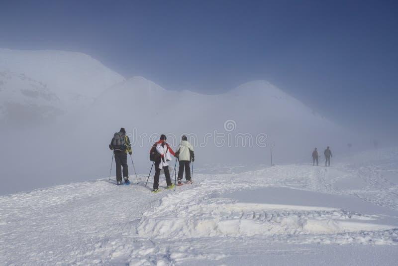Snowshoeing na neve fotos de stock royalty free