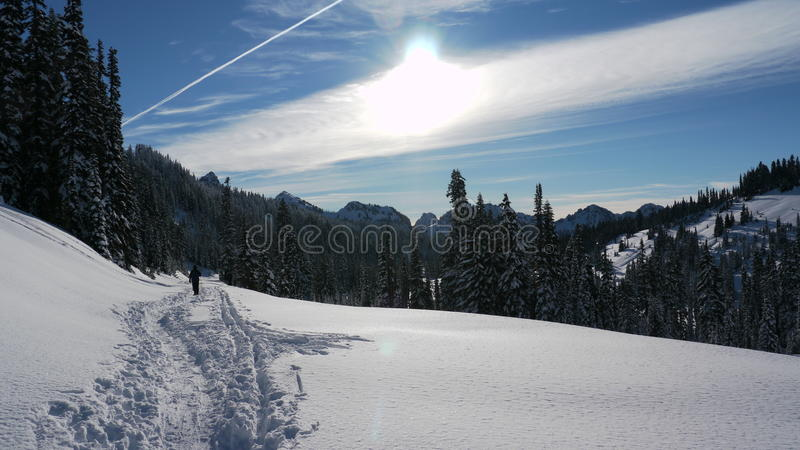 Snowshoeing Paradise