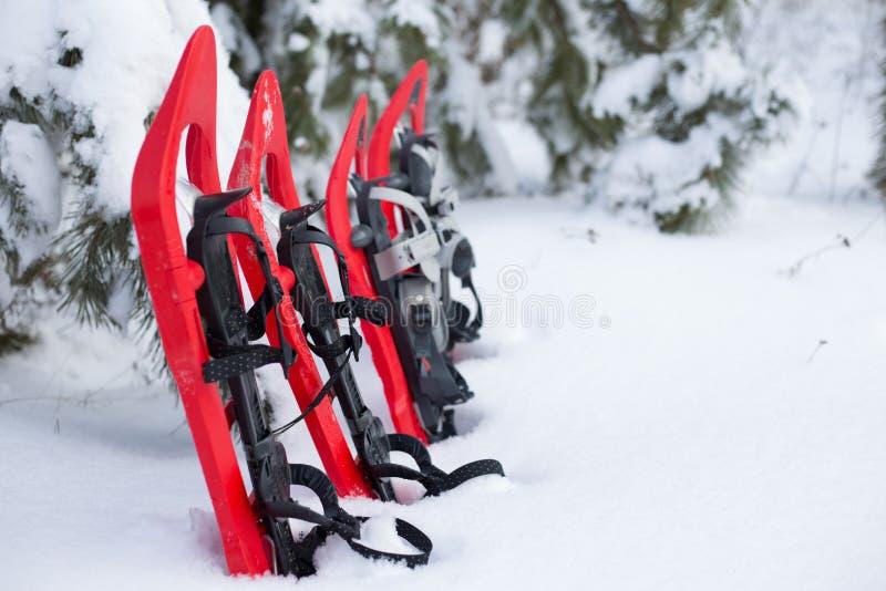 snowshoeing Raquettes dans la neige photographie stock
