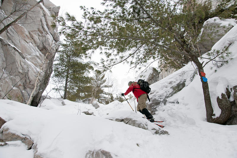 Snowshoeing on Silhouette Trail, Killarney Provincial Park royalty free stock image