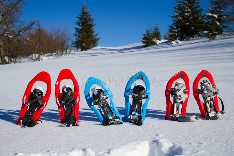 snowshoeing Snowshoes na neve imagem de stock royalty free
