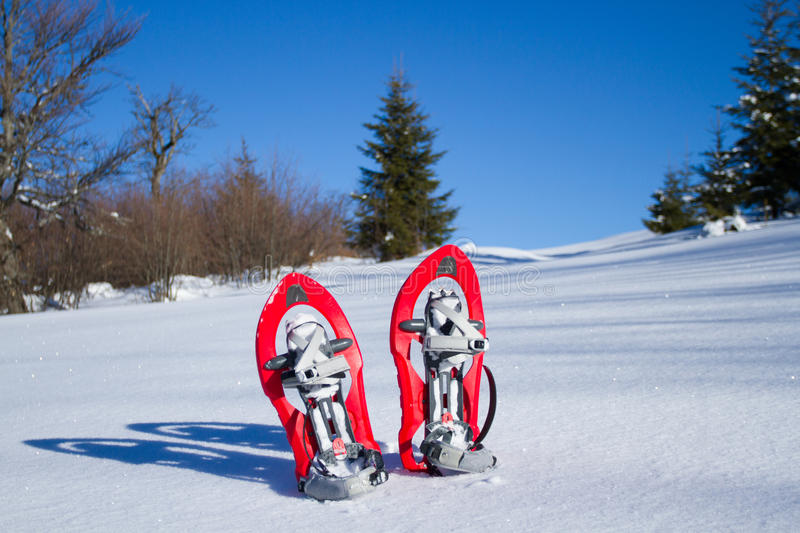 snowshoeing Snowshoes na neve fotografia de stock royalty free