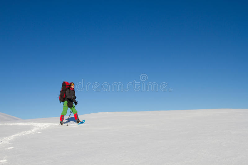 snowshoeing Snowshoes na neve fotos de stock royalty free