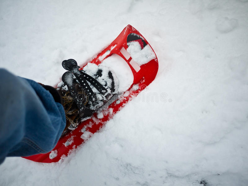 snowshoeing vinter för fotvandrare arkivfoton
