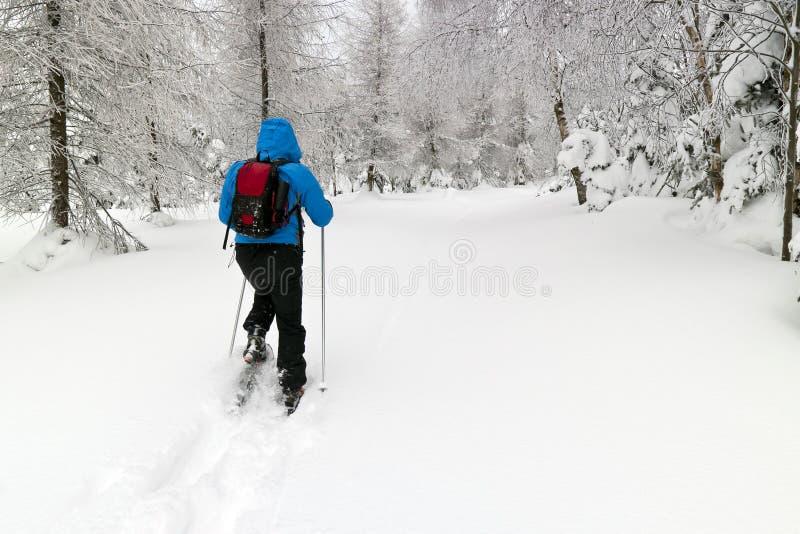 snowshoes человека стоковые фото