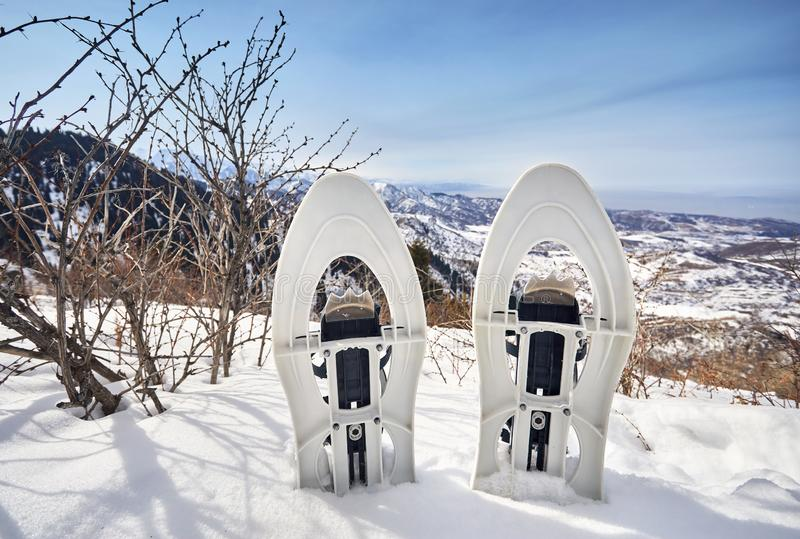 Snowshoes in the snow royalty free stock photos