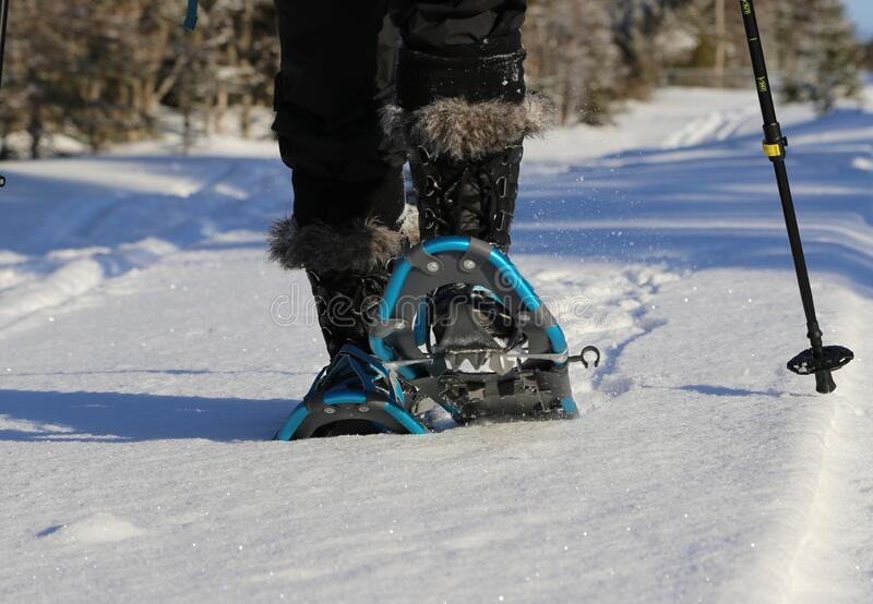 Snowshoes. stock photo