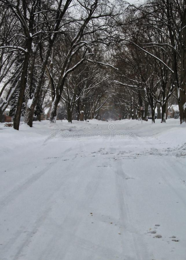 Snowstorm on suburban street in midwestern, northern Illinois winter. Snowstorm on deserted suburban street in midwestern, northern Illinois winter. Tire tracks royalty free stock photo