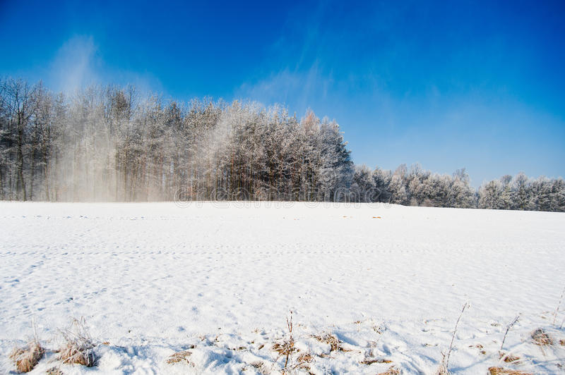 Snowstorm On The Winter Field Panorama Stock Photography