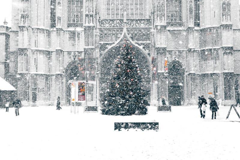 snowstormtown arkivfoto