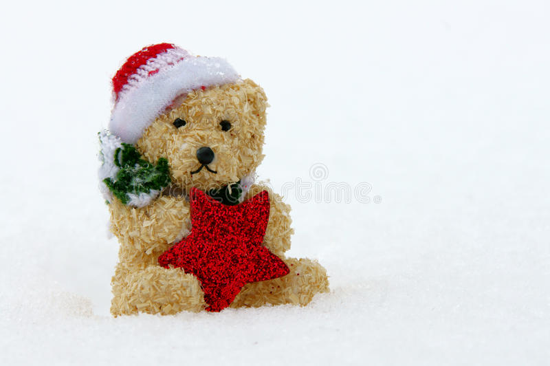Snowteddy image stock