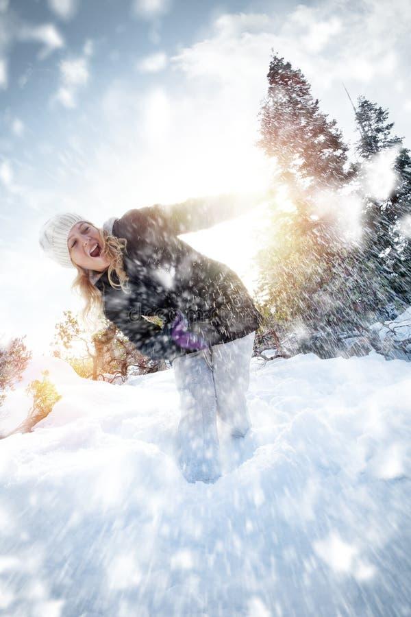 Snowtime imagem de stock