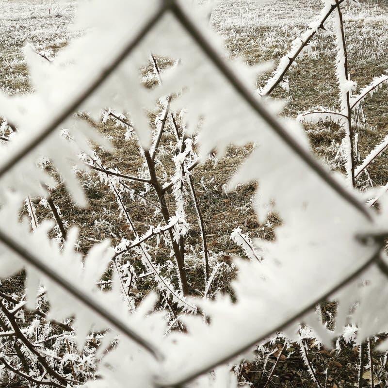 snowtime fotografia stock