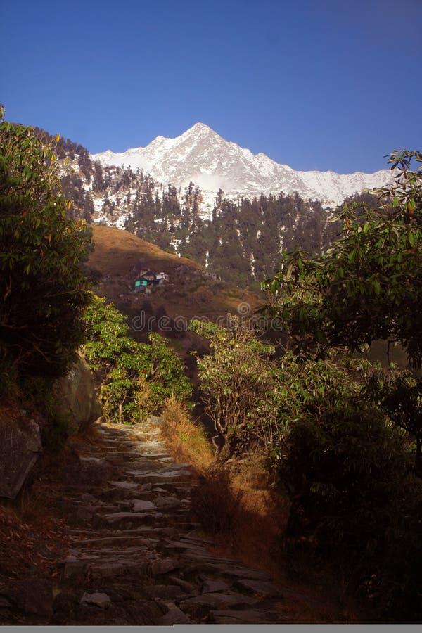 SnowTrekking de l'Himalaya chemine Triund Kangra Inde photographie stock