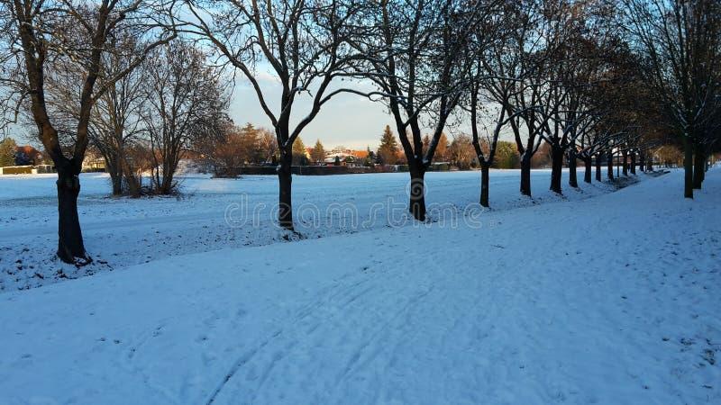 Snowway στοκ εικόνες