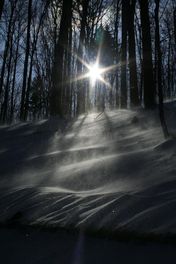 snowwind royaltyfri bild