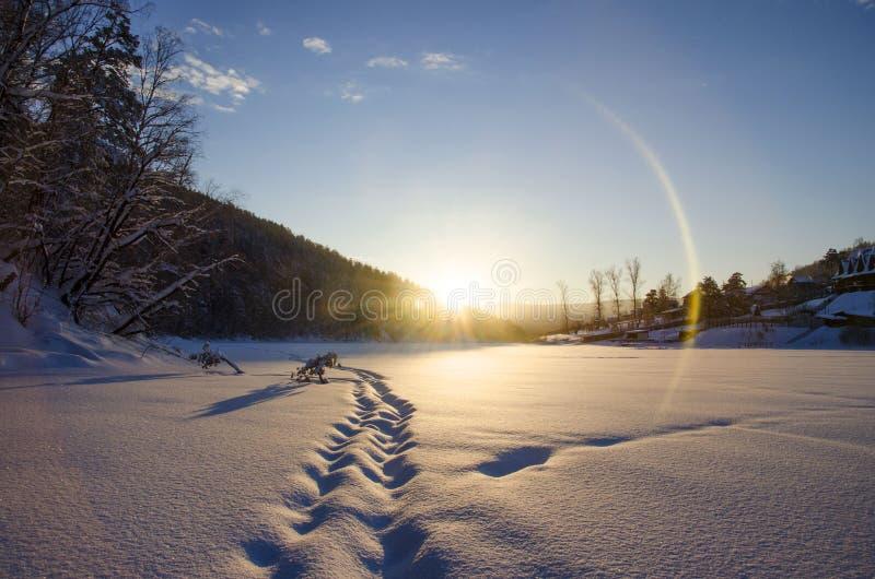 Snowy-Abdrücke lizenzfreies stockfoto