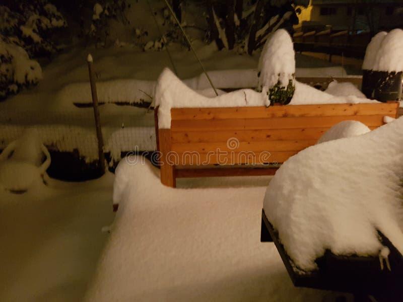 Snowy-Abend lizenzfreies stockbild