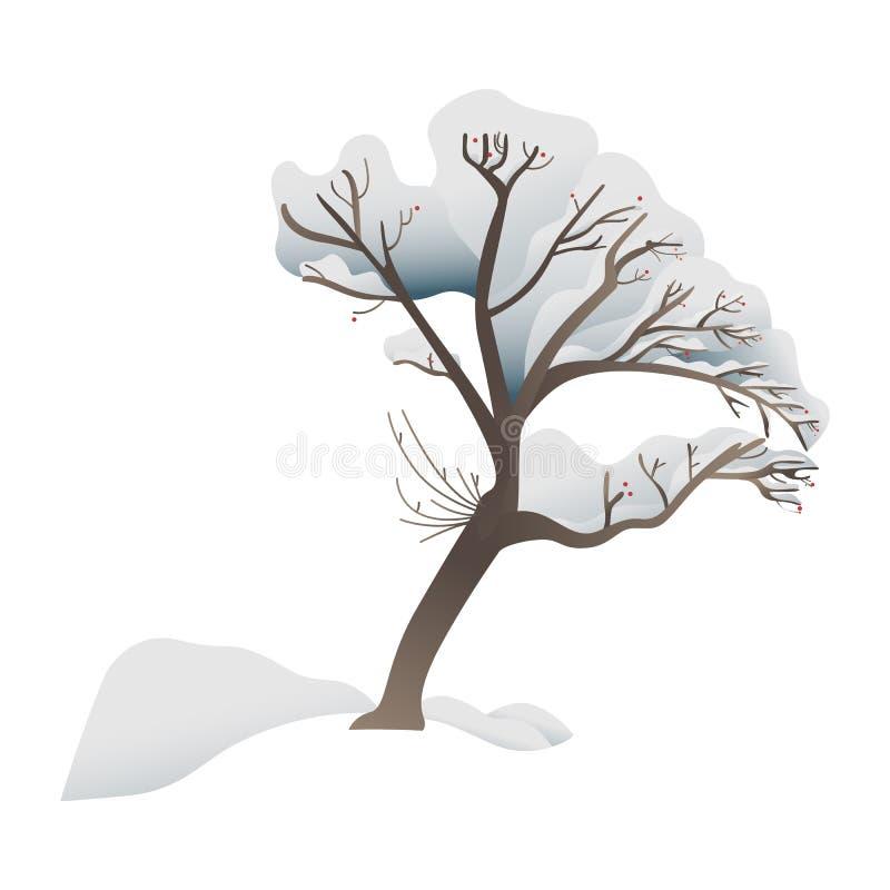 Snowy-Baumvektorillustration - Wald- oder Parkanlage bedeckt mit Schnee stock abbildung