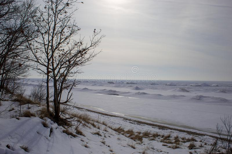 Snowy beach scene with frozen waves and branches. In the evening royalty free stock photo