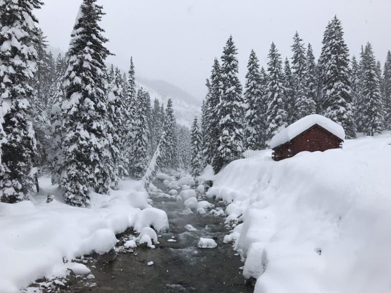 Snowy-Berge an den Gletscher-heißen Quellen lizenzfreies stockbild