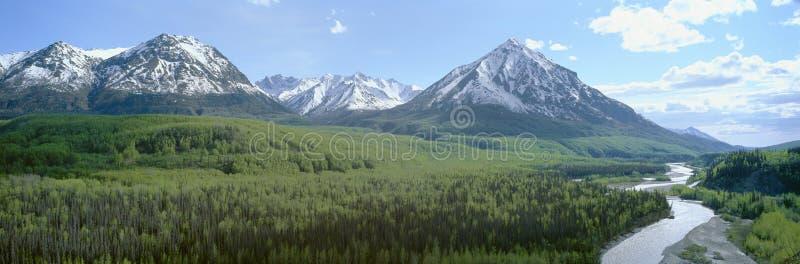 Snowy-Berge, grüne Wälder und Fluss in Matanuska-Tal, Alaska lizenzfreies stockfoto