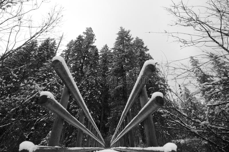 Snowy bridge in forest royalty free stock photo