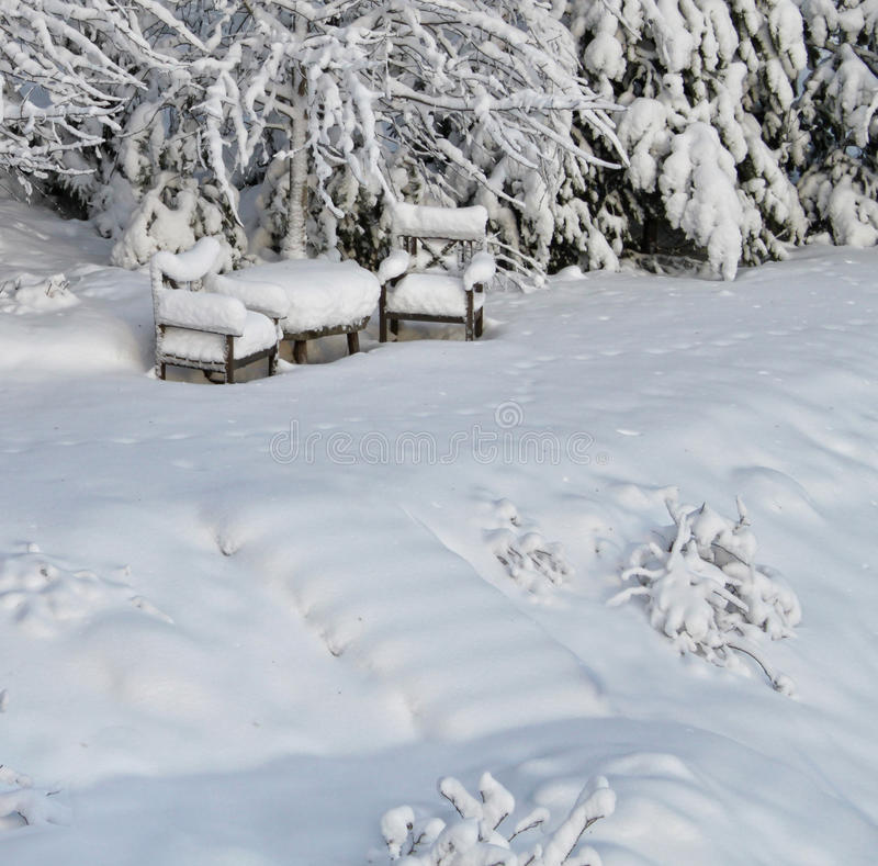 Download Snowy chairs in winter stock photo. Image of outdoors - 22829866